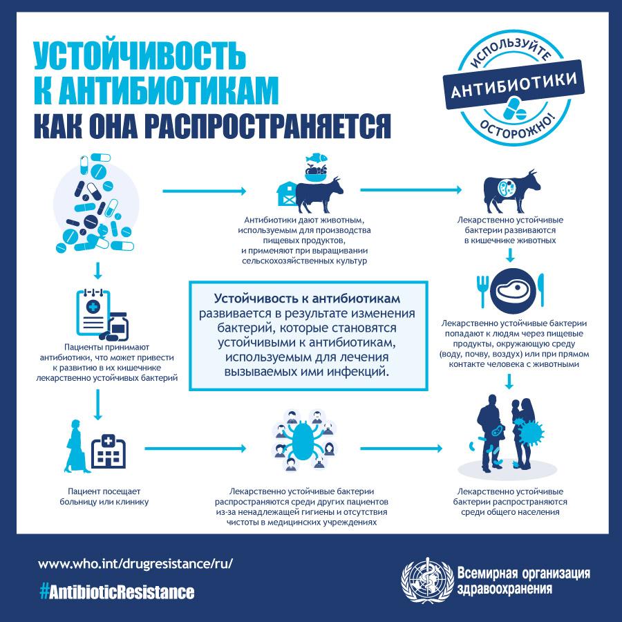 как распространяется устойчивость к антибиотикам